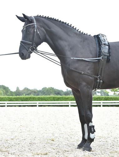 Laufferzügel  -- KORDEL --  Shetty/Pony   Cob/Full